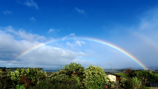 NZで見れたとてもきれいな虹